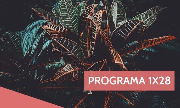 Programa 1×28: Libros para todas, Stop motion y música nueva